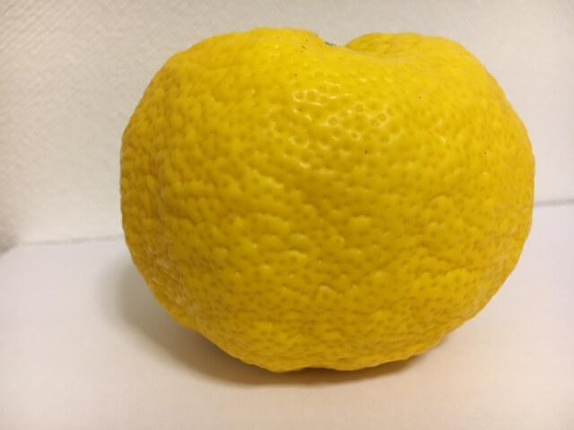 yuzus-three-nutrients01