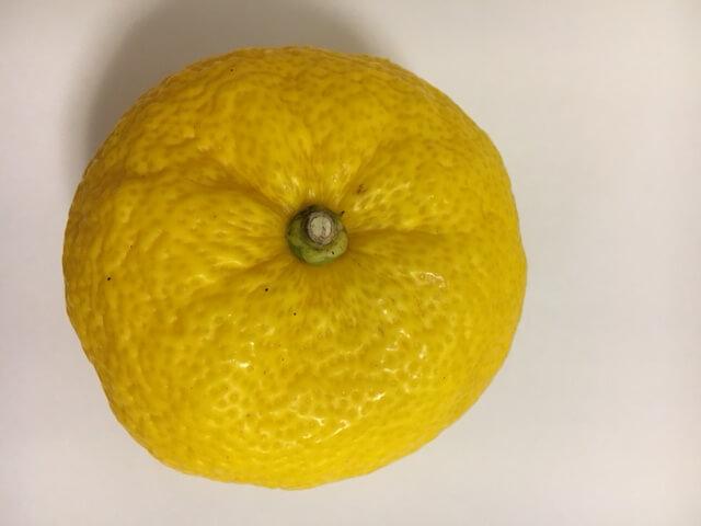 yuzus-three-nutrients02